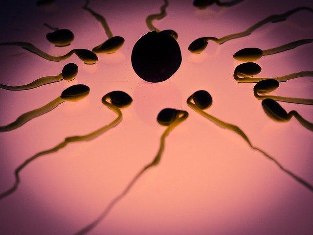oligospermia